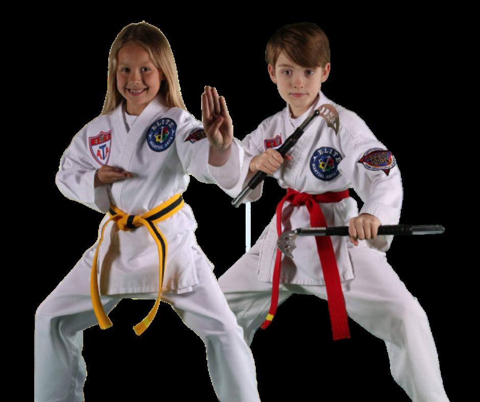 2 Kids Learning Children's Martial Arts