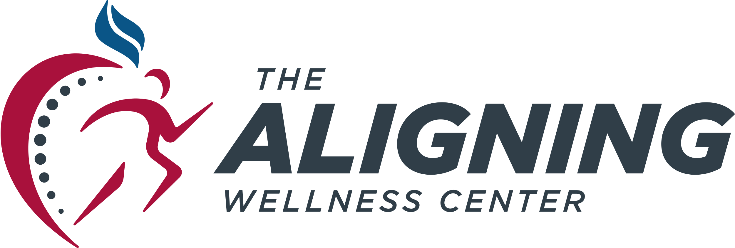 aligning wellness center